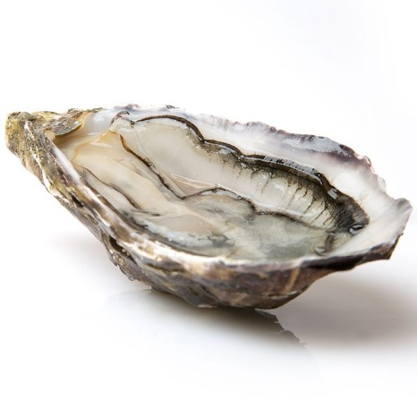 ostras-fine-de-claire00