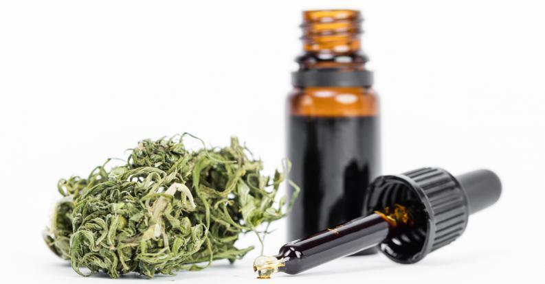 se-aprobo-el-uso-de-aceite-de-cannabis-1